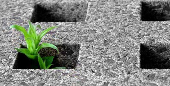 Camera: approvato il ddl sul contenimento del consumo del suolo e del riuso del suolo edificato