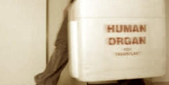 Traffico illecito di organi: il nuovo reato è legge