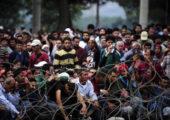 I numeri dei migranti in Europa nel 2016 spiegati in 2 minuti
