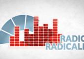 Intervista a Radio Radicale sulle Primarie PD e sui sondaggi elettorali