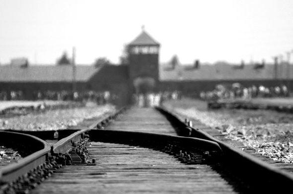 """Giorno della Memoria: """"Combattere l'indifferenza per non ripetere gli orrori del passato"""""""